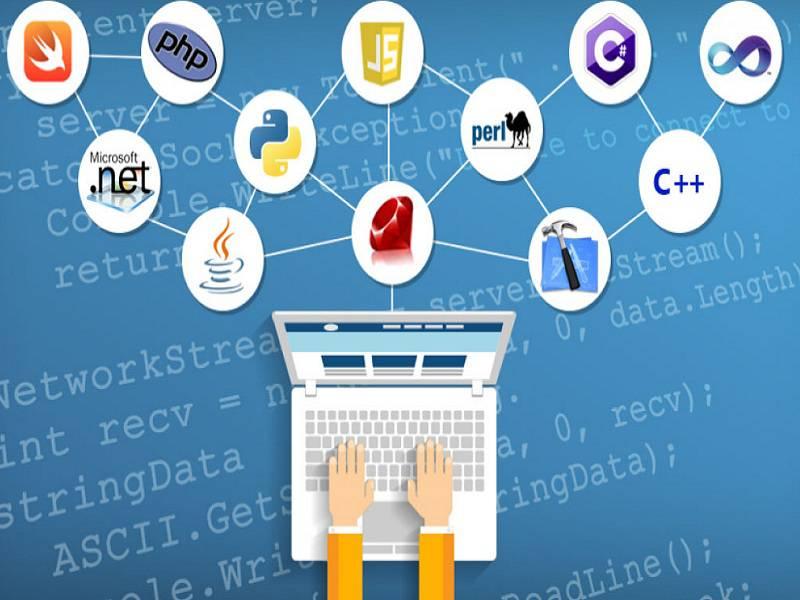 Scripting language có nhiều điểm khác biệt so với Programming language